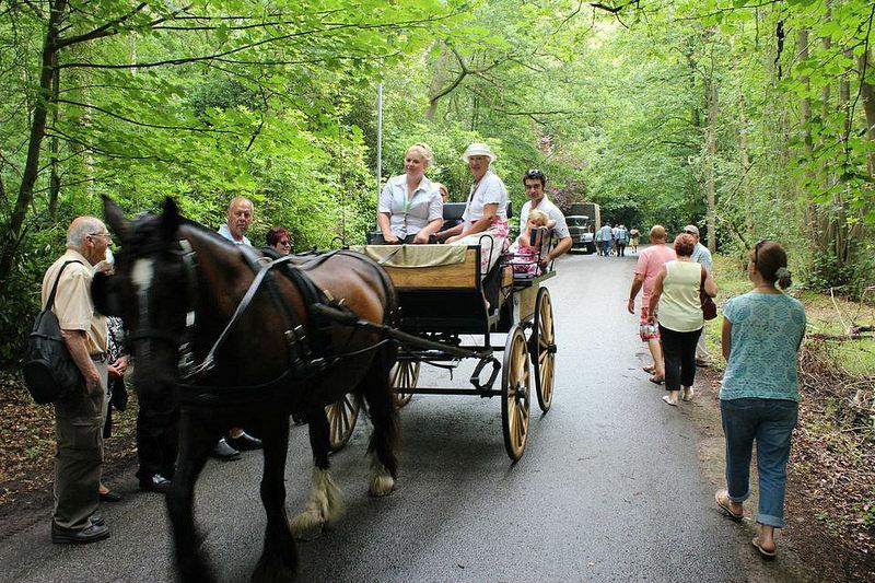 Coronation Road